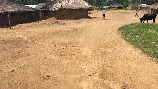 WALKING Through Gbeaken Village | Maryland County, Liberia | SheaMoringaTV
