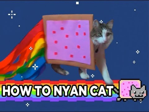 How To Nyan Cat video