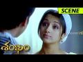 Download Trisha Surprised Gopichand - Sankham Movie Scenes in Mp3, Mp4 and 3GP
