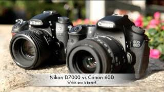 Nikon D7000 vs Canon 60D