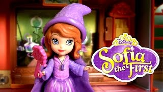 Sorcerer Sofia the First in the Magical Talking Castle Play Doh Wizard Halloween Costume