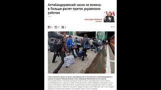 Антибандеровский закон не помеха: в Польше растет приток украинских рабочих