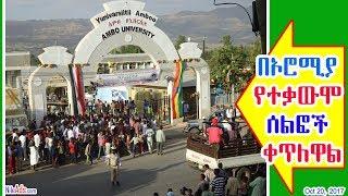 በኦሮሚያ የተቃውሞ ሰልፎች ቀጥለዋል - Ethiopia Oromia protest, AMBO University - DW
