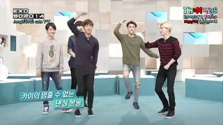EXO Funny Moments😂