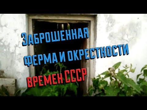 ЗАБРОШЕННАЯ ФЕРМА И ОКРЕСТНОСТИ ВРЕМЕН СССР//деревенские будни