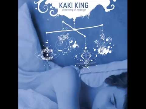Kaki King - Saving Days In A Frozen Head