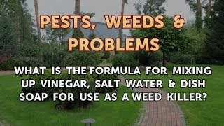 What Is the Formula for Mixing Up Vinegar, Salt Water & Dish Soap for Use as a Weed Killer?