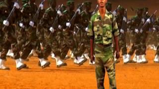 ARMEE NIGERIENNE- AKALI DOGO -