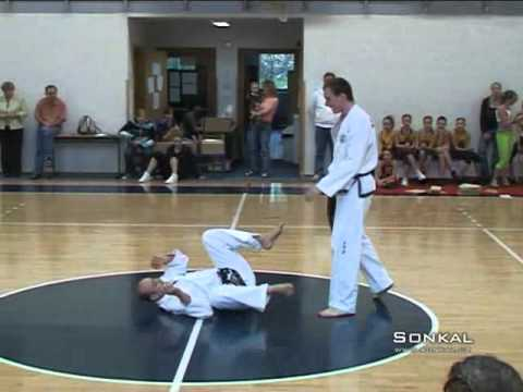 amazing tae kwondo demonstration Image 1