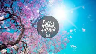 Video Robben Cepeda - Spring Flowers