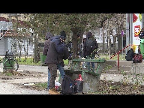 2020.01.03. - Magyarkanizsa községben nagy gondot okoznak a migránsok