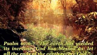 SURELY THE PRESENCE OF THE LORD