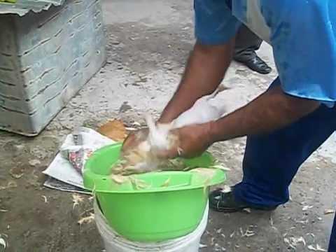 Como pelar papas
