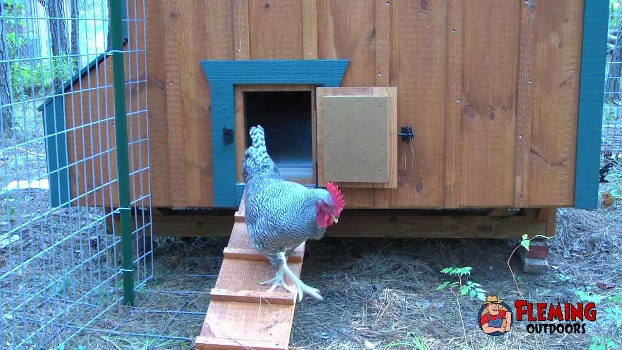 Automatic Chicken Coop Door Opener Youtube