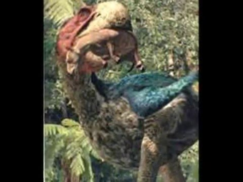 Tribute to Prehistoric Giant Bird
