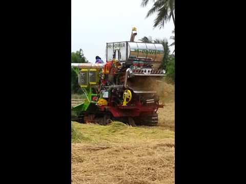 รถเกี่ยวข้าวสามควายไทย P11 C320 Hp