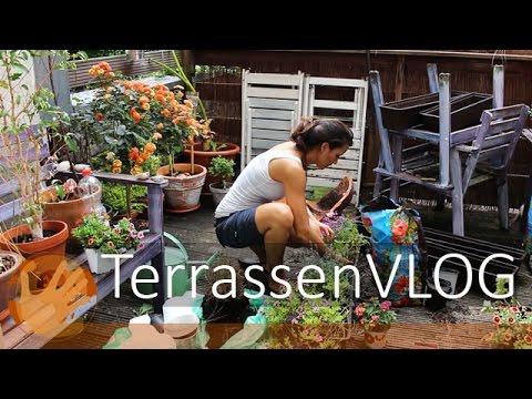 Terrassen - VLOG - Pflanzen und Inspirationen - DIY