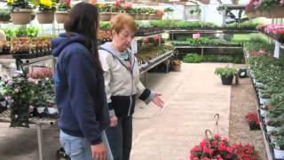 Landscape Center | Milwaukee, WI – Bluemel's Garden & Landscaping Center
