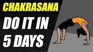 How to do Chakrasana perfectly in 5 days | Easy and Effective method