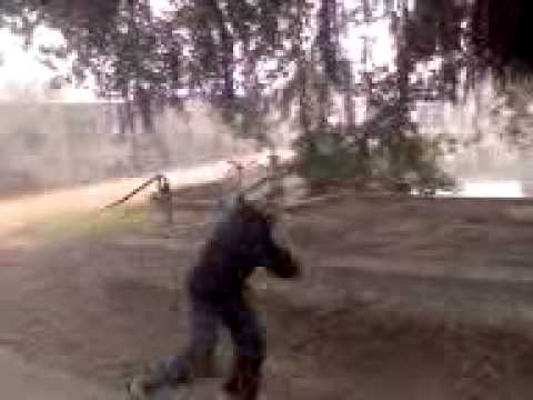 Shakti Shakti Shaktiman.3gp video