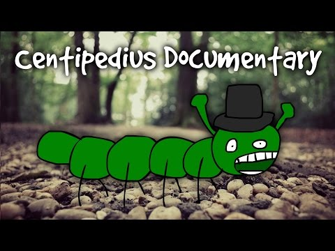 Centipedius - Centipede Simulator - Documentary