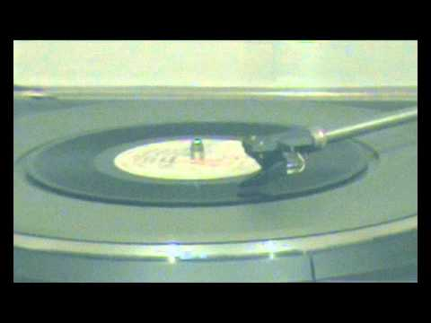 The Slits - In The Beginning (45RPM)