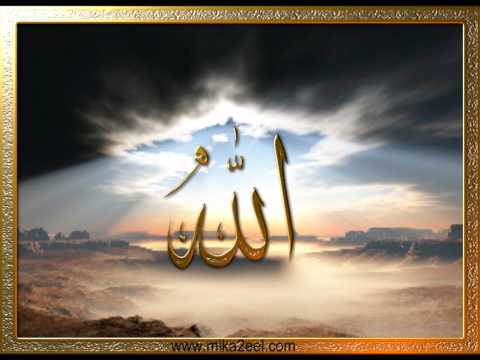 Hafiz Fuad Abdullah Seferagic - Jacaj Naja