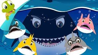 Baby Shark | Funny Song | Kids Nursery Rhyme
