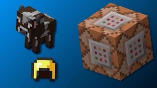 Minecraft One Command Block Creation | More Armor!