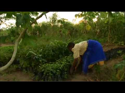 The Story of One Woman's Struggles in Rural Malawi