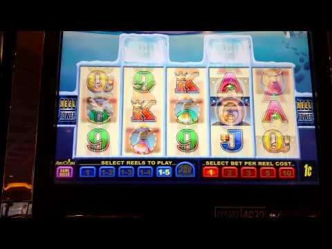 Artic Dreaming slot machine at Parx casino