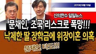 (일일뉴스) 문재인, 조국 리스크로 폭망!!! 조기 레임덕!!! / 신의한수 19.08.19