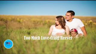 Too Much Love By Craig Reever feat Willow[ 2010s Pop Music]