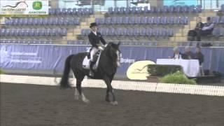 Anne Smith & Lyrical (SA) - Inter I - 2013 Saddleworld AUS Dressage Championships