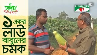 Babul's 10-acre botttle gourd land shows miracle