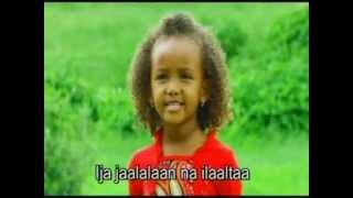 Faarfattuu Waggaa Afurii oromigna song