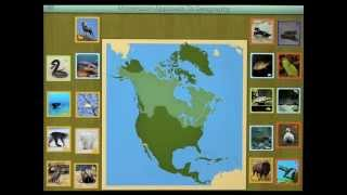 Montessori Approach to Geography HD – Animals of North America