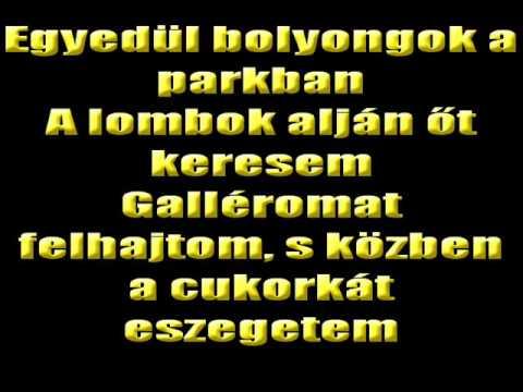 Hungária -  Eszelős Szerelem Karaoke Verzió