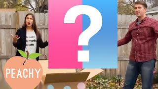 100 Funny Baby Gender Reveals! | Cute Family Compilation