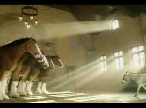 Watch Budweiser Commercial - Clydesdales Donkey