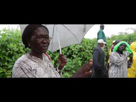 YIIFSWA Farmer Exchange Program