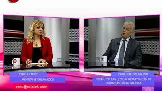 İş ve Yaşam | Prof.Dr.Özcan Bör