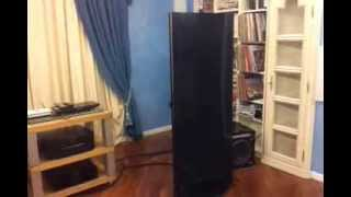 ReMusic e i Leonardo Speakers