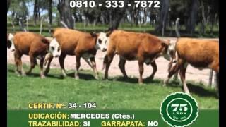 CyM 30 10 14 CERT 34 104