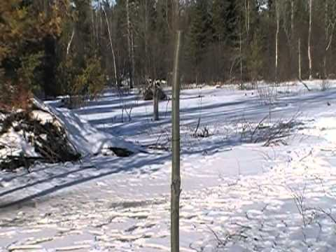 Beaver Trapping Under Ice Snares...