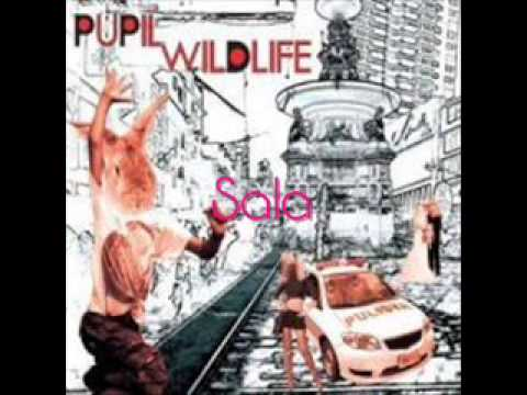 Pupil - Sala