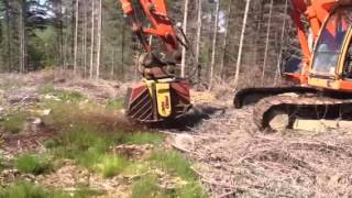 Doosan 255 with stump grinder