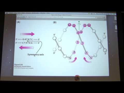13. Kevin Ahern's Biochemistry - Enzyme Mechanisms & Regulation