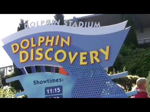 """The Complete 2009 """"Dolphin Discovery"""" Show at SeaWorld"""