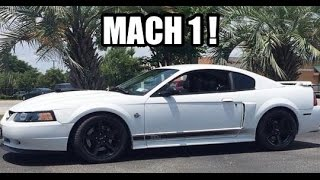 2004 Ford Mustang Mach 1 Vlog